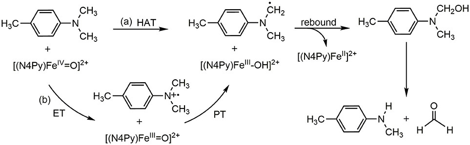 ET-PT(SET) and HAT mechanism in the para-substituted N,N-dimethylanilines activated by [(N4Py)-FeIV = O](ClO4)2